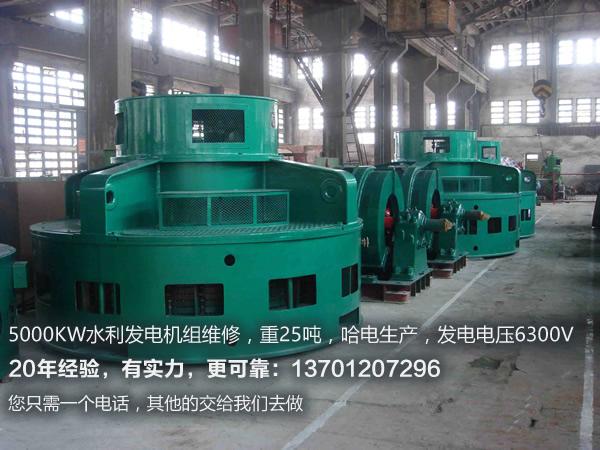 立式水轮发电机.jpg