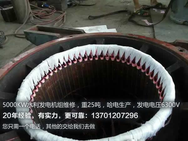 水轮<a href=http://www.niuqi99.com/cases/fadianjiweixiu/ target=_blank class=infotextkey>发电机维修</a>